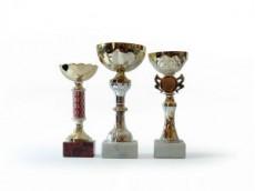 Trophy-401203-m