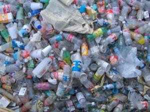 trash-473333-m