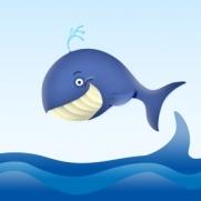 whale-1406956-m